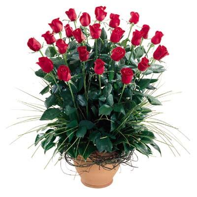 Bolu uluslararası çiçek gönderme  10 adet kirmizi gül cam yada mika vazo