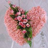 kalp pano karankil ve güller   Bolu internetten çiçek siparişi