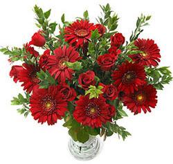5 adet kirmizi gül 5 adet gerbera aranjmani  Bolu hediye çiçek yolla