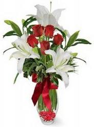 Bolu çiçek siparişi vermek  5 adet kirmizi gül ve 3 kandil kazablanka