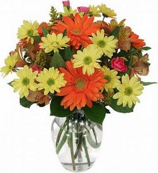 Bolu hediye sevgilime hediye çiçek  vazo içerisinde karışık mevsim çiçekleri