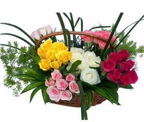 Bolu ucuz çiçek gönder  35 adet rengarenk güllerden sepet tanzimi