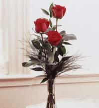 Bolu internetten çiçek satışı  Vazoda 3 adet güzel gül