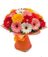 Renkli gerbera buketi  Bolu anneler günü çiçek yolla