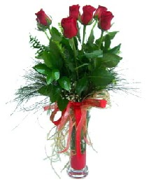 vazo içerisinde 5 kırmızı gül  Bolu güvenli kaliteli hızlı çiçek