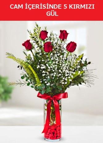 Cam içerisinde 5 adet kırmızı gül  Bolu çiçek siparişi sitesi