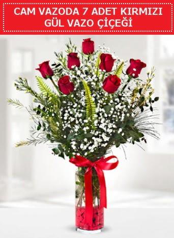 Cam vazoda 7 adet kırmızı gül çiçeği  Bolu çiçek gönderme sitemiz güvenlidir