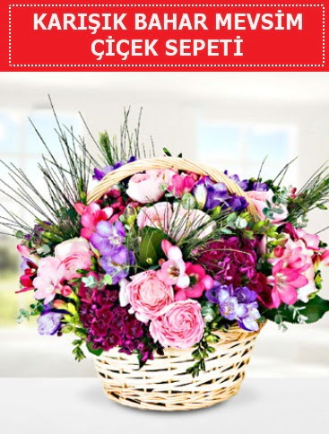 Karışık mevsim bahar çiçekleri  Bolu ucuz çiçek gönder