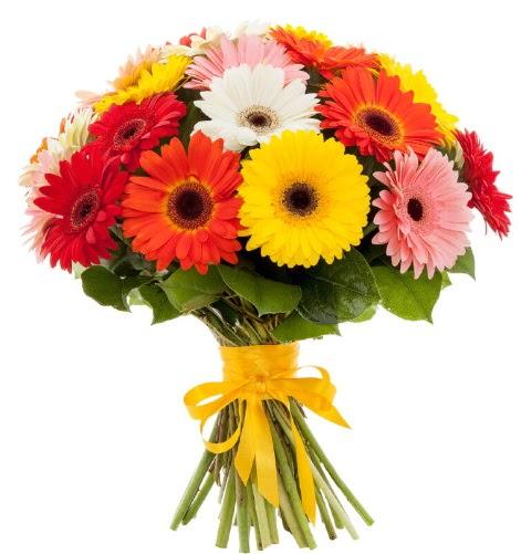 Gerbera demeti buketi  Bolu çiçek satışı
