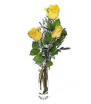 Bolu internetten çiçek siparişi  3 adet kalite cam yada mika vazo gül