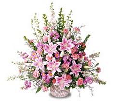 Bolu çiçek siparişi sitesi  Tanzim mevsim çiçeklerinden çiçek modeli
