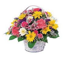 Bolu çiçek , çiçekçi , çiçekçilik  mevsim çiçekleri sepeti özel