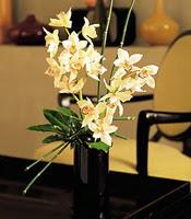 Bolu çiçekçiler  cam yada mika vazo içerisinde dal orkide