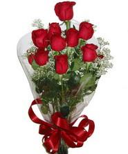9 adet kaliteli kirmizi gül   Bolu online çiçekçi , çiçek siparişi