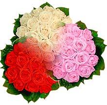 3 renkte gül seven sever   Bolu çiçek , çiçekçi , çiçekçilik