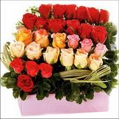 15 adet renkli gül ve cam   Bolu çiçekçi mağazası