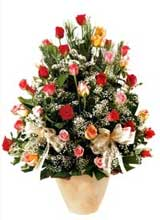 91 adet renkli gül aranjman   Bolu çiçek gönderme sitemiz güvenlidir