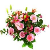 lilyum ve gerbera çiçekleri - çiçek seçimi -  Bolu çiçek gönderme