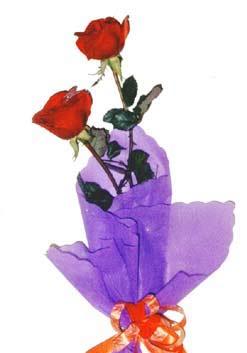 2  adet kirmizi gül buketi   Bolu çiçek , çiçekçi , çiçekçilik