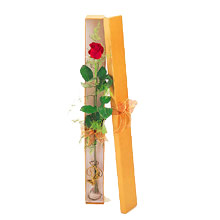 ince  kutuda  1  gül   Bolu çiçek yolla