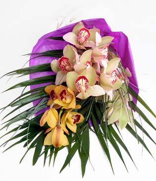 Bolu cicekciler , cicek siparisi  1 adet dal orkide buket halinde sunulmakta