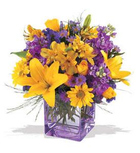 Bolu çiçek mağazası , çiçekçi adresleri  cam içerisinde kir çiçekleri demeti