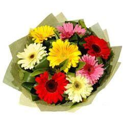 9 adet karisik gerbera demeti  Bolu çiçek mağazası , çiçekçi adresleri