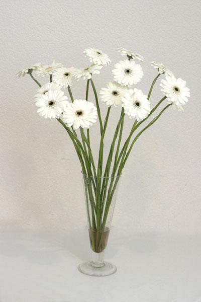 Bolu çiçek mağazası , çiçekçi adresleri  cam vazo içerisinde 17 adet sade gerbera