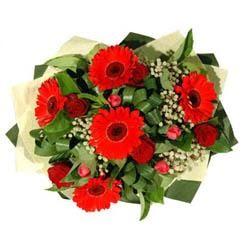 Bolu ucuz çiçek gönder   5 adet kirmizi gül 5 adet gerbera demeti