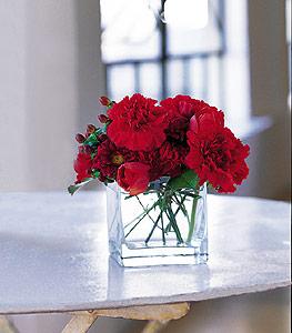 Bolu ucuz çiçek gönder  kirmizinin sihri cam içinde görsel sade çiçekler