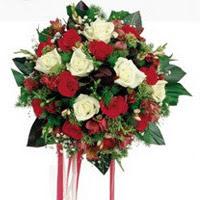 Bolu ucuz çiçek gönder  6 adet kirmizi 6 adet beyaz ve kir çiçekleri buket