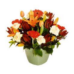 mevsim çiçeklerinden karma aranjman  Bolu çiçek yolla , çiçek gönder , çiçekçi