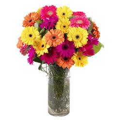 KARISIK GERBERALARDAN CAM VAZO TANZIMI  Bolu güvenli kaliteli hızlı çiçek