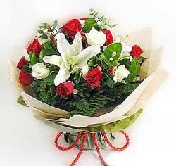 güller ve kazablanklardan görsel bir buket  Bolu internetten çiçek satışı