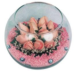 Bolu internetten çiçek satışı  cam fanus içerisinde 10 adet gül