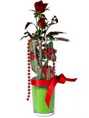 Bolu online çiçek gönderme sipariş  Cam yada mika içerisinde 9 adet kirmizi gül - sevdiklerinize özel