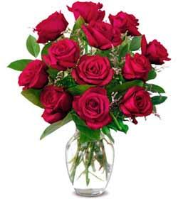 Bolu online çiçek gönderme sipariş  1 düzine kirmizi gül sevenlere özel vazo gülleri