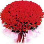Bolu online çiçekçi , çiçek siparişi  1001 adet kirmizi gülden çiçek tanzimi