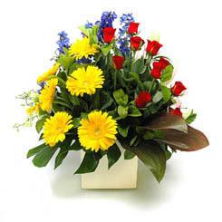 Bolu online çiçek gönderme sipariş  9 adet gül ve kir çiçekleri cam yada mika vazoda