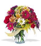 Bolu çiçek , çiçekçi , çiçekçilik  cam yada mika vazo içerisinde karisik kir çiçekleri