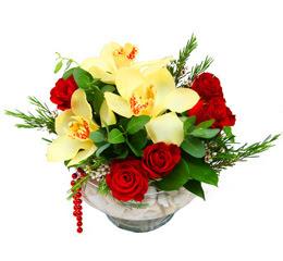 Bolu çiçek gönderme  1 adet orkide 5 adet gül cam yada mikada