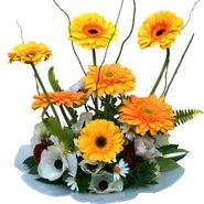 camda gerbera ve mis kokulu kir çiçekleri  Bolu çiçekçi telefonları