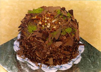 Çikolatali 4 ila 6 kisilik yas pasta  Bolu çiçek gönderme sitemiz güvenlidir