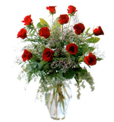 Vazo içerisinde 11 kirmizi gül  Bolu çiçek siparişi vermek
