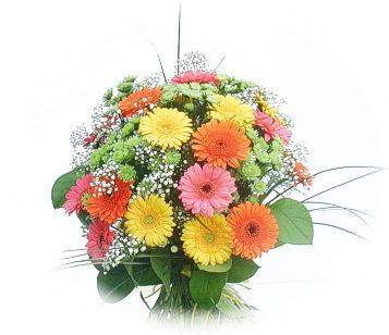 13 adet gerbera çiçegi buketi  Bolu online çiçek gönderme sipariş