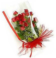 13 adet kirmizi gül buketi sevilenlere  Bolu çiçek siparişi vermek