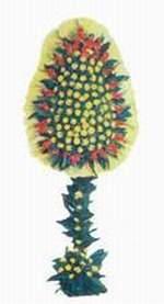 Bolu çiçek yolla  dügün açilis çiçekleri  Bolu online çiçek gönderme sipariş