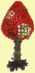 Bolu çiçek gönderme  dügün açilis çiçekleri  Bolu çiçek online çiçek siparişi