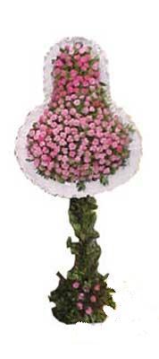 Bolu ucuz çiçek gönder  dügün açilis çiçekleri  Bolu internetten çiçek siparişi