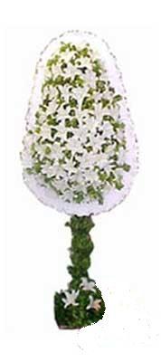 Bolu çiçek siparişi sitesi  nikah , dügün , açilis çiçek modeli  Bolu online çiçek gönderme sipariş